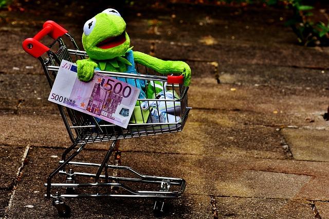 žába na nákupech.jpg